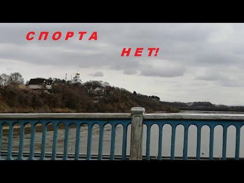 #Лесозаводск. Спортивный комплекс закрыт. Супер стрижка от Оли. Кот на даче- это сосед, или хозяин?
