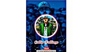Pullingo Gana songs / Coollip pullingo gana songs  /rowdy pullingo gana songs whatsapp status 😇⚔