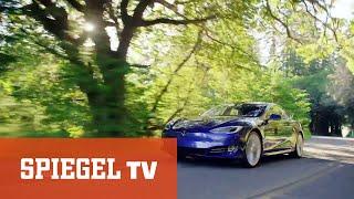 E-Auto? Nein danke! - Warum Brandenburger Politiker keinen Dienst-Tesla wollen