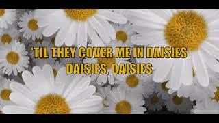 Daisies  Can't Cancel Pride - Katy Perry |lyrics