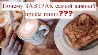Почему ЗАВТРАК самый важный прием пищи? Как научиться завтракать?#DomSovetov