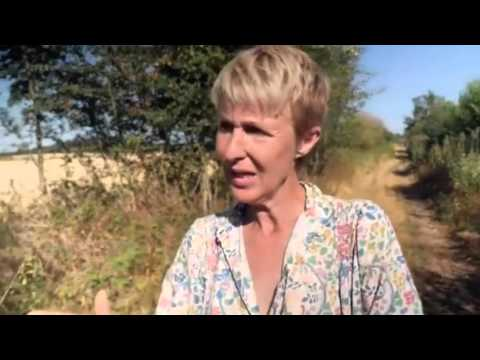 Agroforesterie, Domaine de Courances