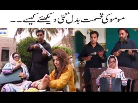 Momo Ki Qismat Badal Gaiye Dekhiye Kaise