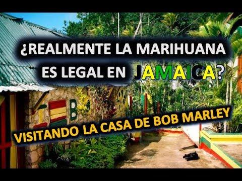 Desmintiendo! ¿Es legal la marihuana en Jamaica?