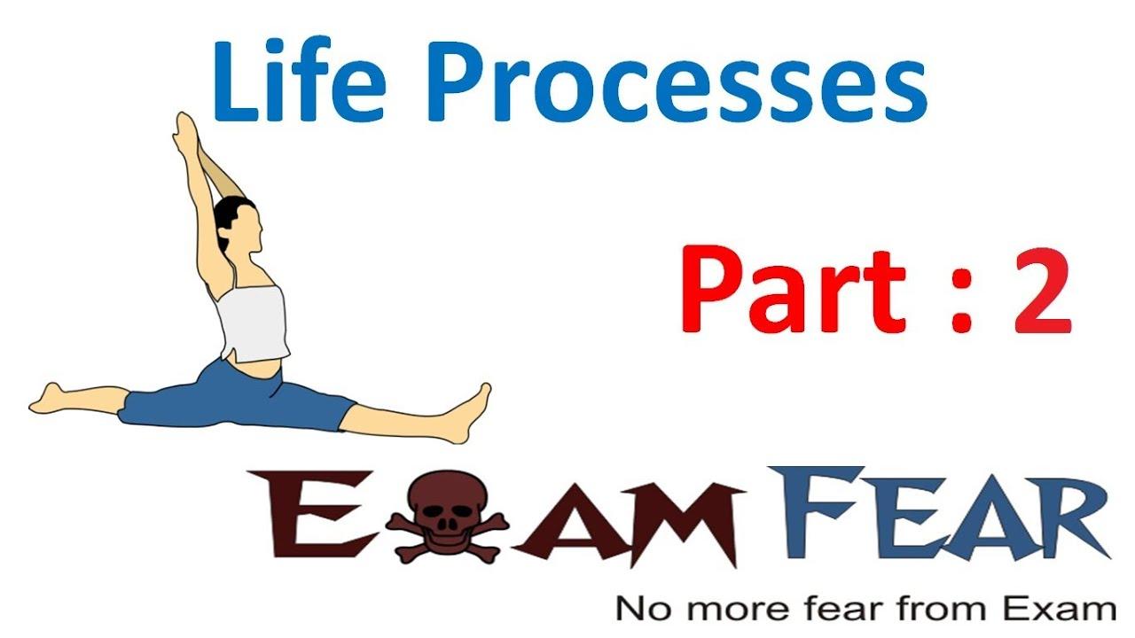 Biology Life Processes part 2 Different Life Processes CBSE – Life Processes Worksheet