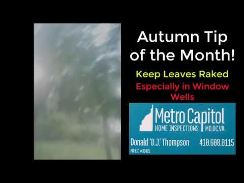 Autumn Tip of the Month