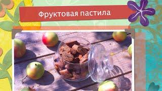 Пастила фруктовая (сыроедческая, без термообработки)
