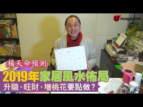 【#香港地】2019 豬年家居風水布局!楊天命教催吉避凶擺設 3/3
