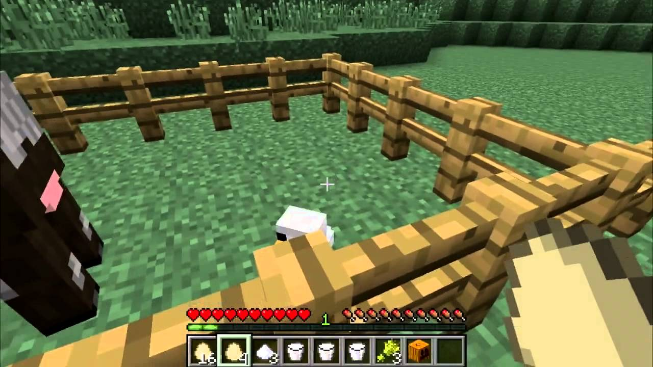 Egg – Official Minecraft Wiki
