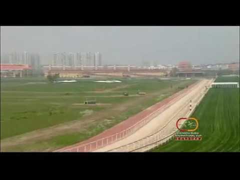2014 Chengdu Dubai International Cup