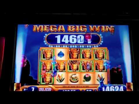 WMS - Buffalo Spirit Wins + Progressive - SugarHouse Casino - Philadelphia, PA