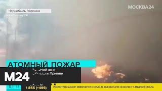 Новости мира за 14 апреля: пожар в Чернобыле достиг хранилищ с радиоактивными отходами - Москва 24