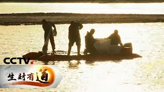 《生财有道》 20200106 山东东营河口区:寒冷的海边 火热的收获| CCTV财经