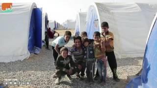 غرفة الأخبارسياسة  نزوح عائلات الموصل.. عرض مستمر