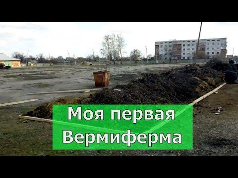 Первая вермиферма в Кочетовке, Зачепиловка. Бурьян, трава, навоз. Бизнес в селе, биогумус, черви.