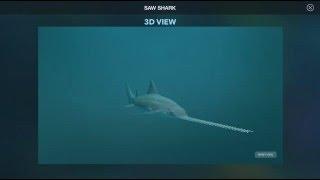Sawshark - Amazing World OCEAN app