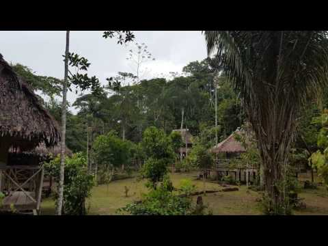 Ayahuasca Retreat Peru 2016, 2017