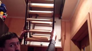 видео Как выбрать чердачную лестницу?
