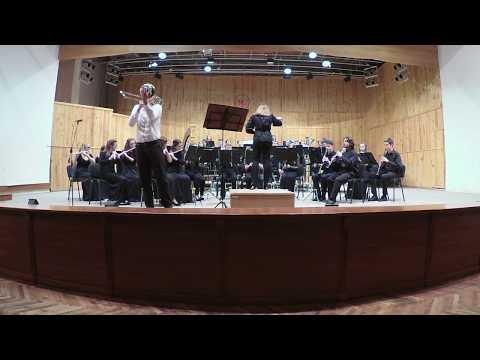 "В. Троян ""Романс Лягушки"". Солист И. Круговой + оркестр."