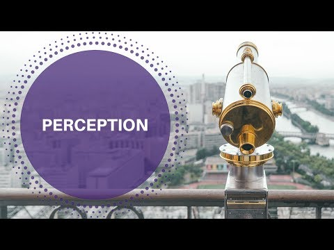 Three Secrets to Improve Perception