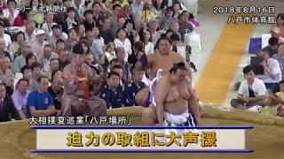 大相撲夏巡業「八戸場所」が16日、八戸市体育館で開かれた。青森県出...