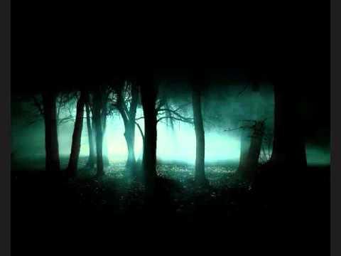 Barad-Dûr - Nachtlicher Wald