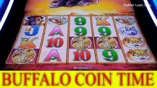 Buffalo Gold Coin Time with Bonuses - Redtint Loves Slots