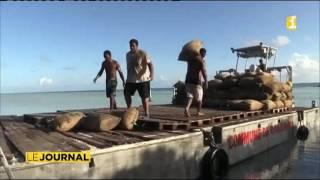 Rangiroa : le coprah, le trésor des Tuamotu