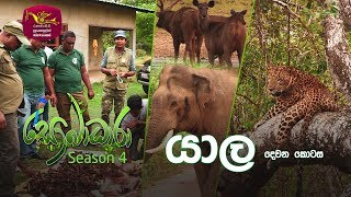 Sobadhara - Sri Lanka Wildlife Documentary | 2020-06-12 | Yala - 2 (යාල -2) Thumbnail