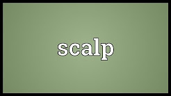 Scalp Meaning