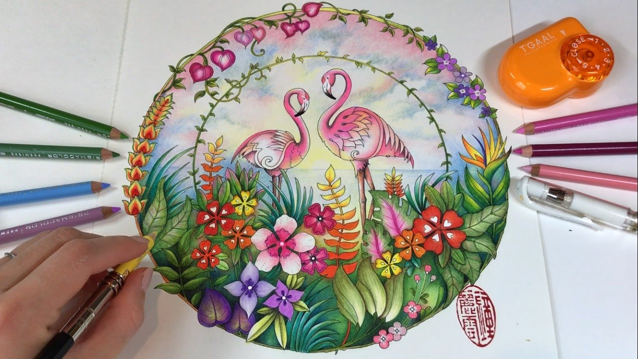 Pink Flamingo Part 2 Magical Jungle Coloring Book By Johanna Basford