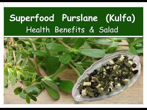 Amazing benefits of Superfood Purslane (kulfa)