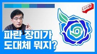 [라이브] 파란 장미가 준비되고 있습니다 ... 그게 뭘까요?