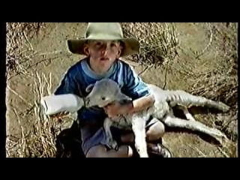 Channel 9 Adelaide Commercials 1999 Part 2