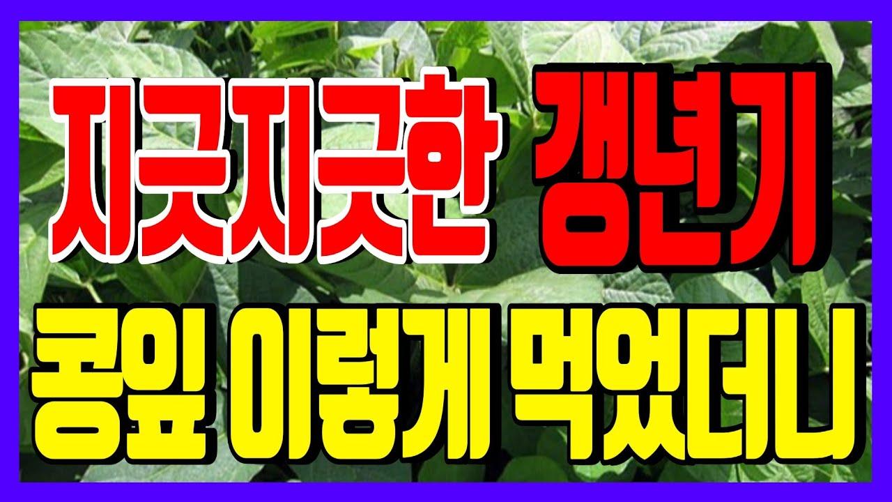 콩잎 놀라운 효능!!온몸 아팠던 증상! 콩잎이 살려줬다! 콩잎 먹고 아픈증상 싹 사라졌다!
