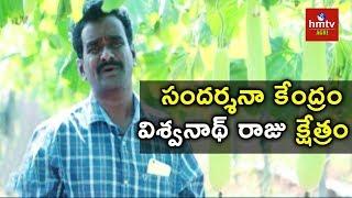 Modren Agriculture Techniques by Vishwanadha Raju | hmtv Agri