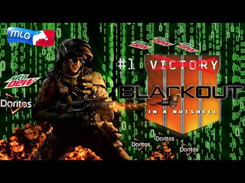 Blackout in a Nutshell (Call of Duty Blackout Funny Moments) thumbnail