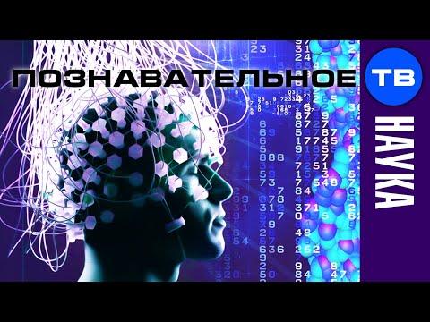 Управление мозгом человека (Познавательное ТВ, Сергей Савельев)