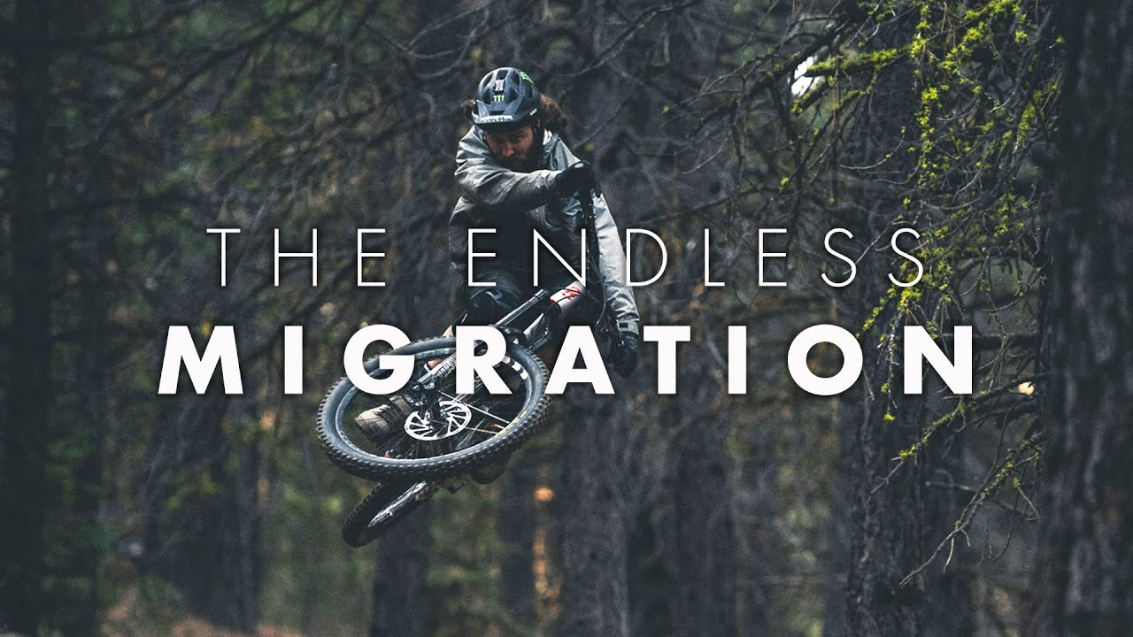 The Endless Migration // Graham Agassiz