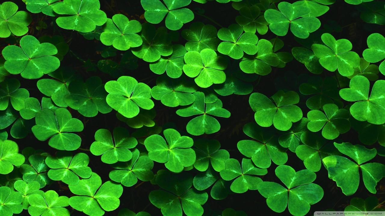christian hudson four leaf clover kokaholla remix youtube