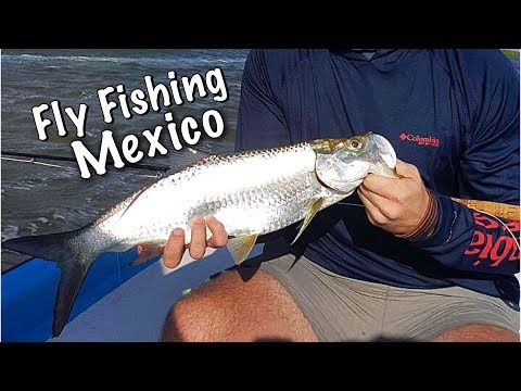 Fly Fishing In Mexico! (Tarpon On The Fly)