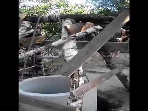 Канализация или как опустить бетонное кольцо вручную