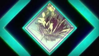 Blooming Tea Flashback | Tea Pursuit