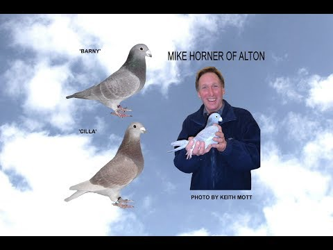 Video 365: Mike & Theresa Horner of Alton (Part 2): Show Pigeons
