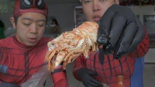 한국에서 먹기 힘든 러시아 '곰새우'🦐 먹어봤습니다.