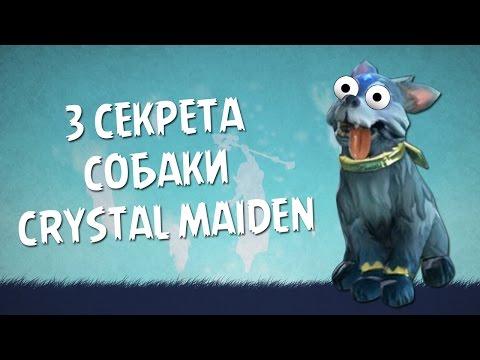 видео: 3 секрета собаки crystal maiden в dota 2
