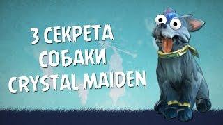 3 секрета собаки Crystal Maiden в Dota 2