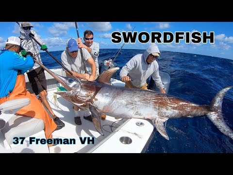 37 Freeman Boat Vs BIG SWORDFISH In The Gulf Stream