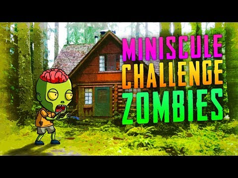 Miniscule Challenge (Call of Duty Custom Zombies)