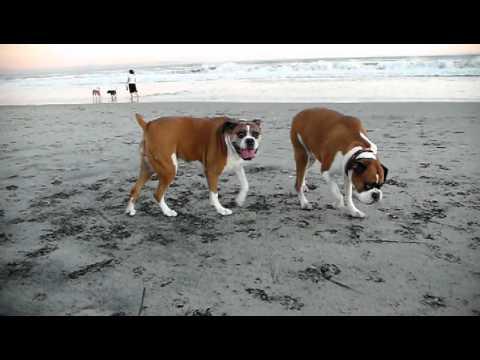 Molly and Emma at Coronado